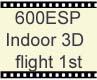 T-REX600ESP 3D Flight 1st